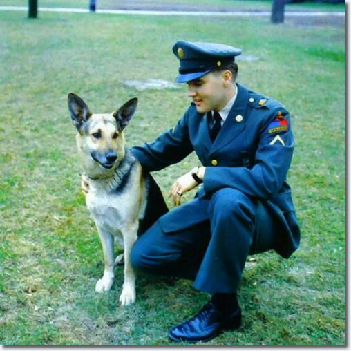 Army - Elvis Prersley with a German Shepherd